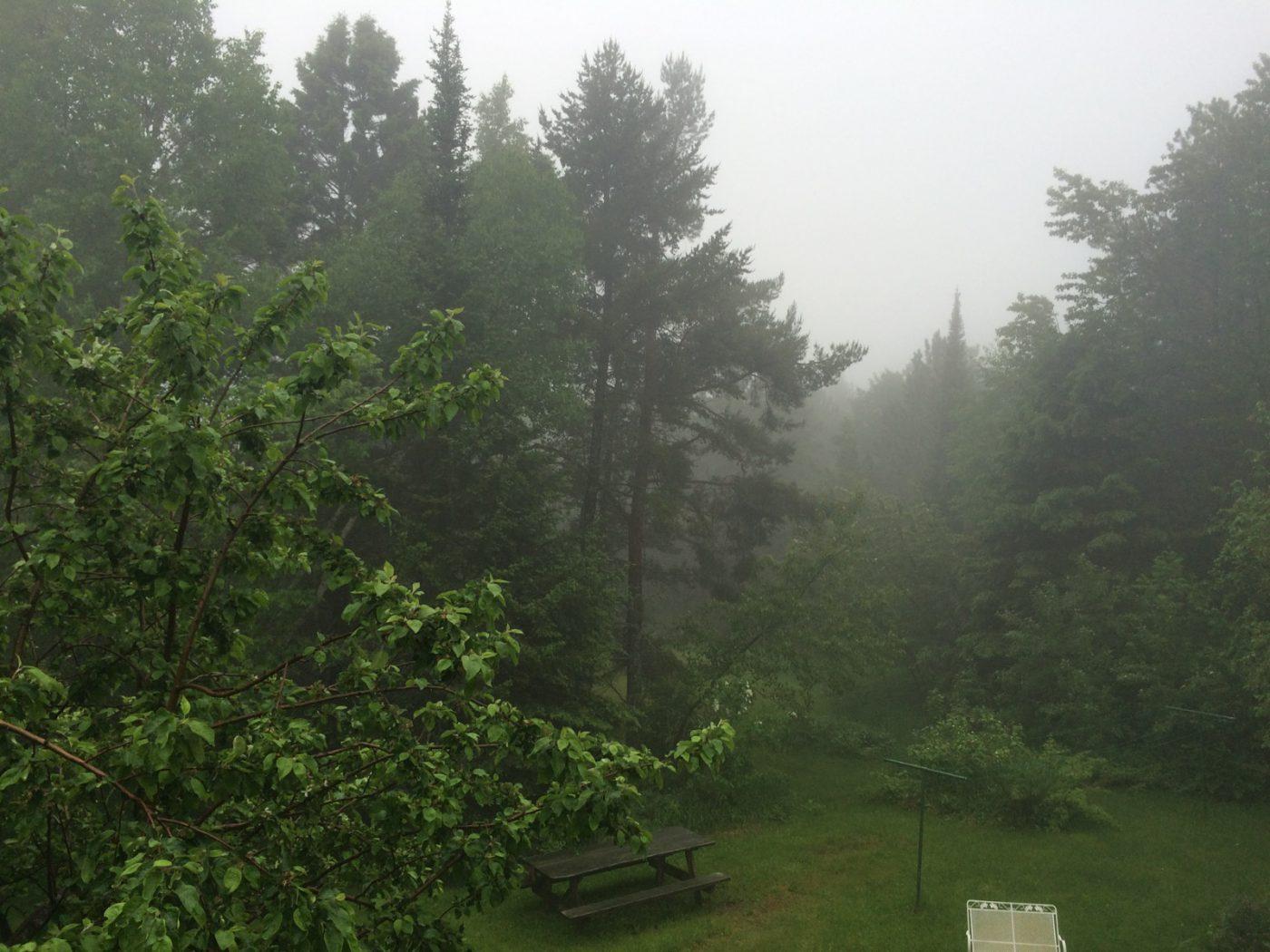 season of mist store